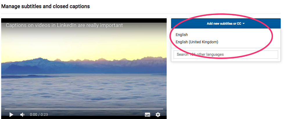 Choose Language - YouTube Video Captions 4